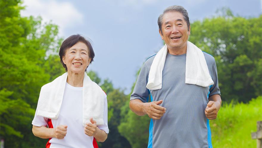 骨代謝を維持し炎症を抑える