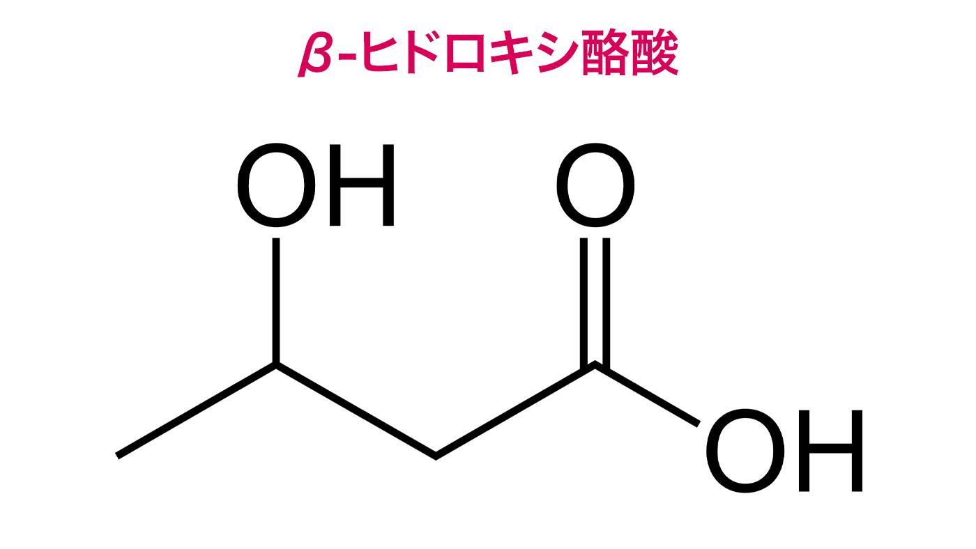 ケトン体(β-ヒドロキシ酪酸)は骨格筋ミトコンドリアへ影響し運動能力に影響する