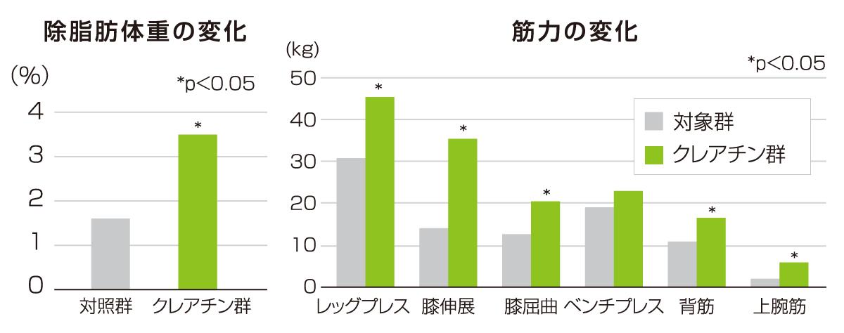 効果1.筋肉量/筋力の向上