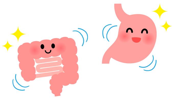 胃腸は味がわかる!? 消化管での主要栄養素の感知に関するナラティブレビュー