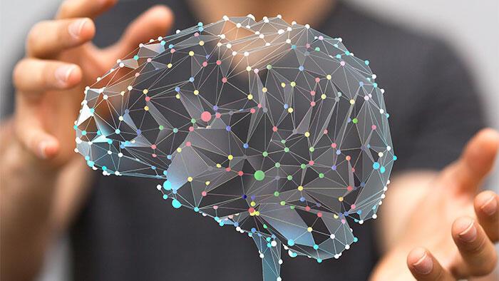 ライフスタイルの選択と脳の健康 ポイントは運動、栄養、睡眠、社会的つながりなど